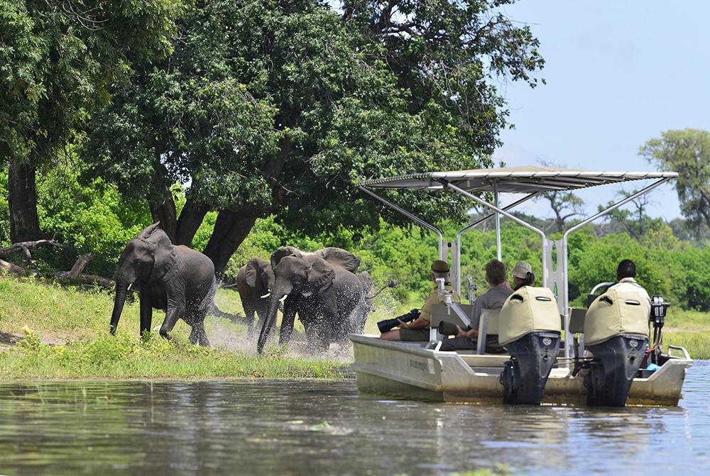 贊比西河/風景/Victoria Falls Journey/非洲之傲/火車/非洲