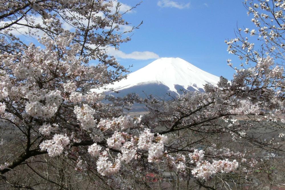 富士山/Fujisan/日本/Japan