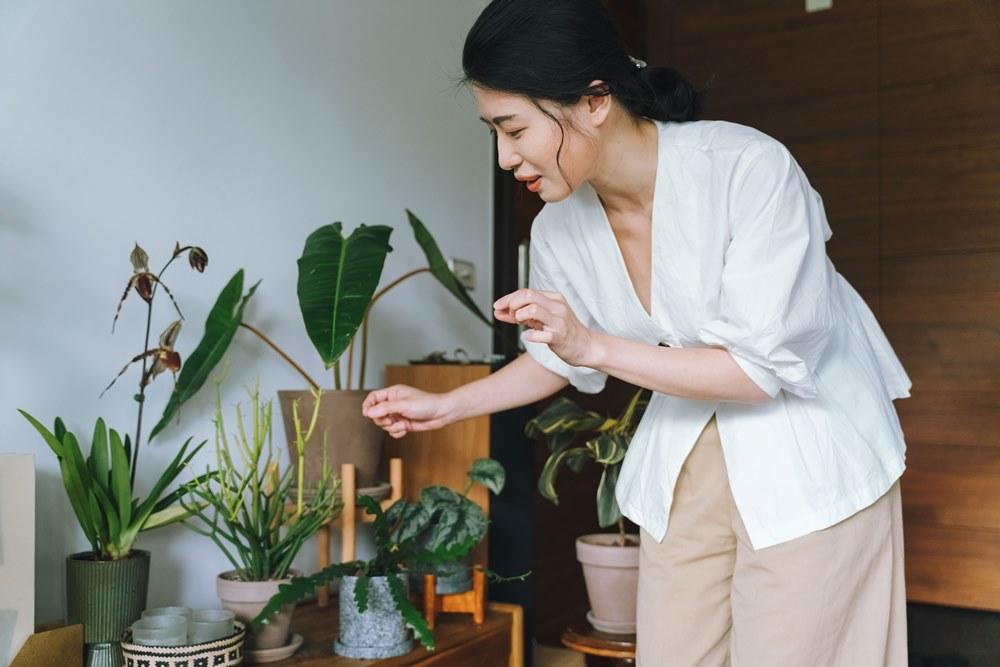 Yuty Huang的家/植物風格師/台北/台灣