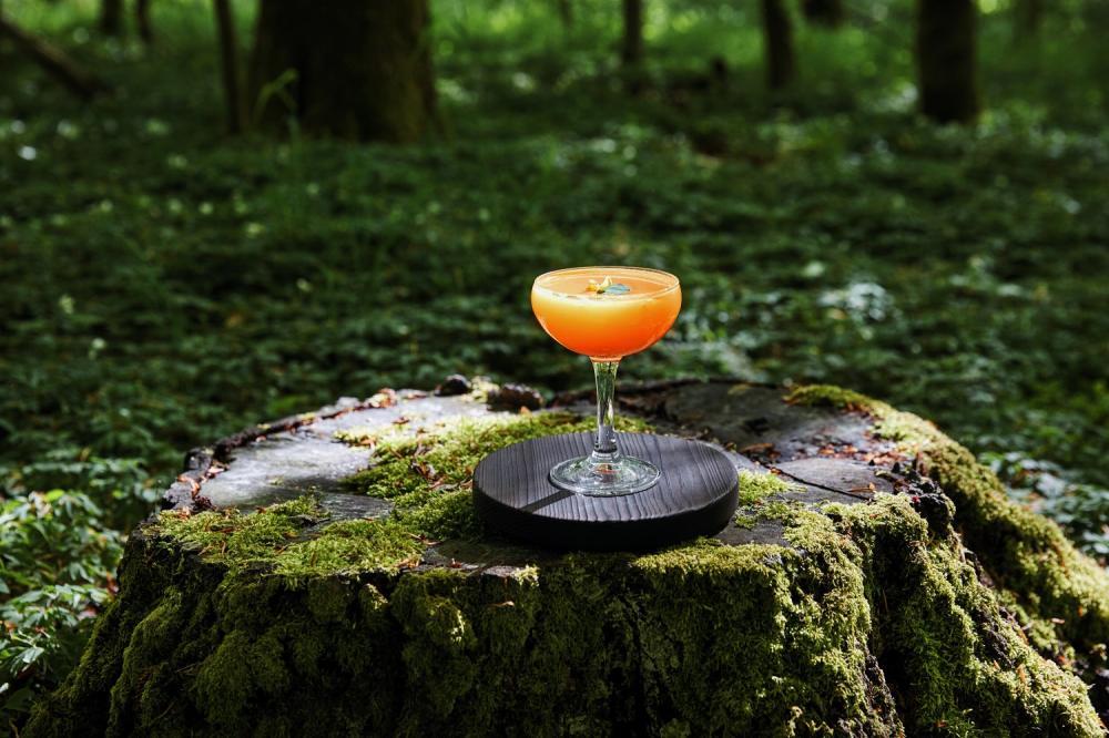 雞尾酒/大自然/露天酒吧/瑞典旅遊局/瑞典