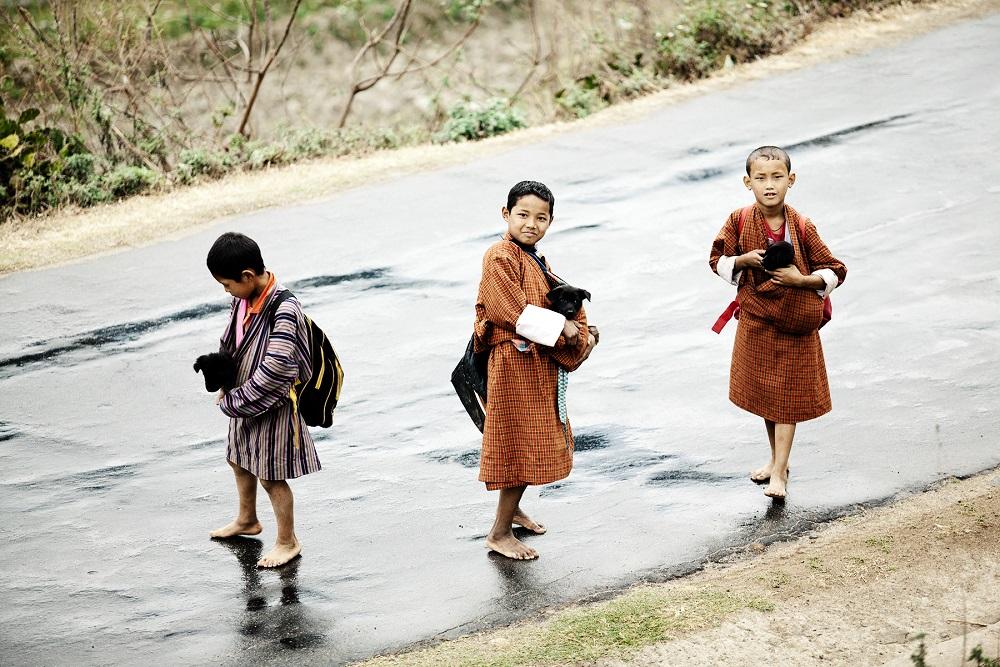 溪水/內部空間/六善酒店(Six Senses Bumthang)/喜瑪拉雅山腳/布姆塘/不丹