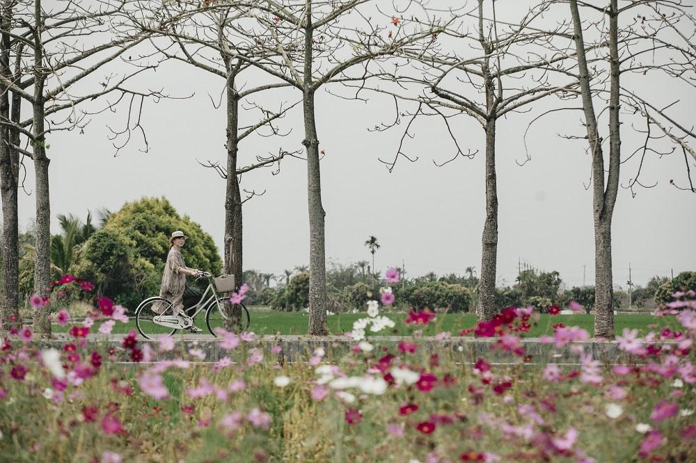 單車/旅遊/台南/台灣