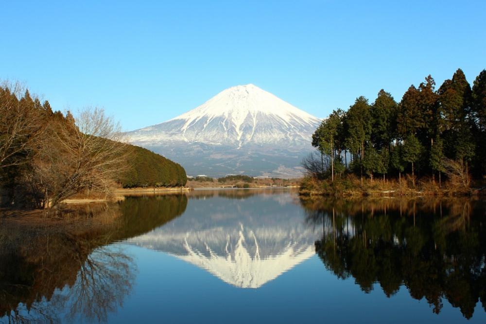 雪景/富士山/靜岡縣/日本
