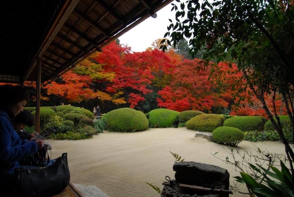 楓葉/詩仙堂/京都/日本