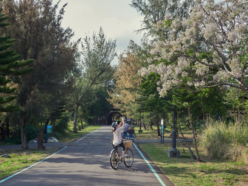 單車/台東森林公園/自行車道/台東/台灣