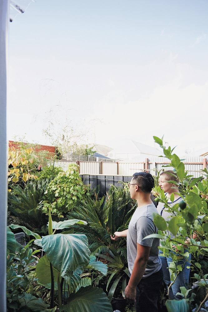 植物/The Plant Society/Jason Chongue/植物專賣店/日本