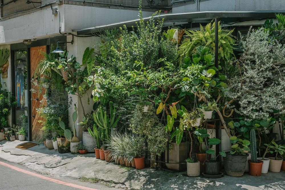 店外觀/Corner Green植角工作室/植物/創意生活/新竹/台灣