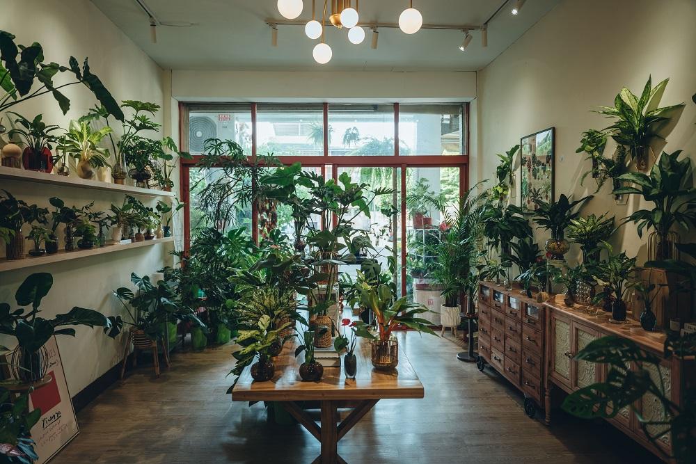 內部空間/伯伯賣花 水培植栽專賣/植物/創意生活/高雄/台灣